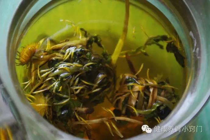 烧心:喝蒲公英茶灭菌又v芦笋芦笋木耳汤图片